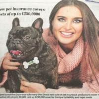 commssolver-Post-Insurance